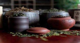 Элитный чай - особенности, влияние и вкусовые качества