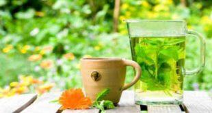 Полезные виды травяного чая