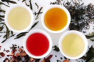 Польза и вред чая детокс